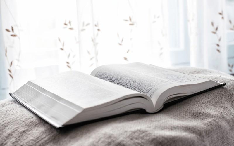 Read Through the Gospels in 40 Days + Free Printable Checklist