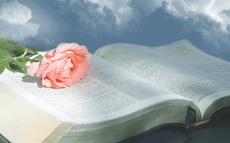 How to Memorize Scripture + Why It's Important